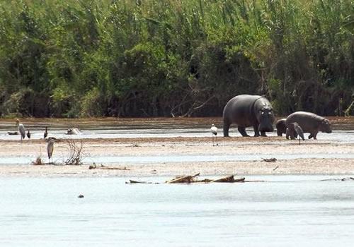 Burundi Safaris