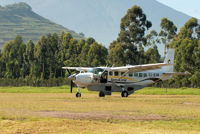 Fly to Bwindi Impenetrable National Park